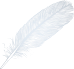 cropped-large_white_transparent_feather_png_clipart.png